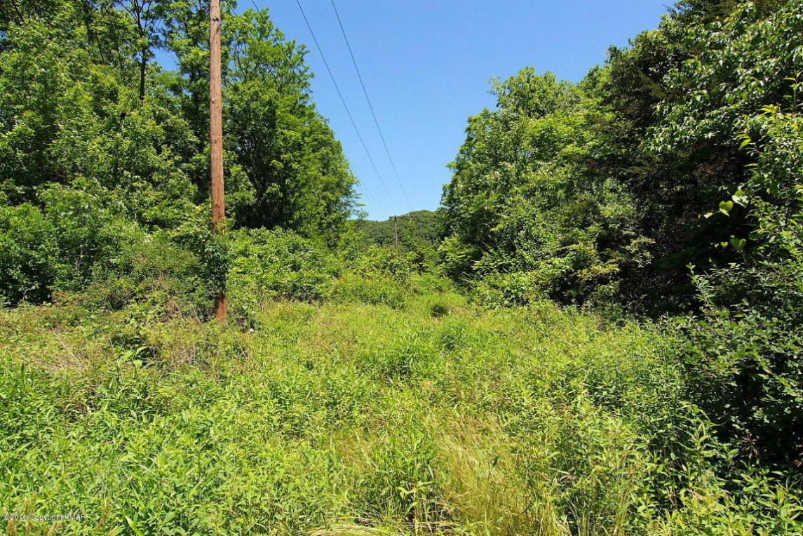3C/R 15.61 Acres On Walnut Dr, Delaware Water Gap, PA 18327