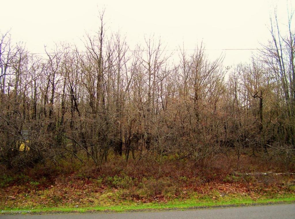 62 Crest View Road, Blakeslee, PA 18610