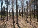 22 Trout Creek Drive, Pocono Lake, PA 18347