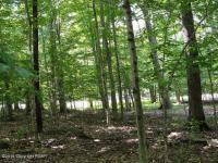 801 Deer Run Road, Pocono Lake, PA 18347