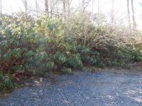 10 Brookside Drive, Pocono Pines, PA 18350