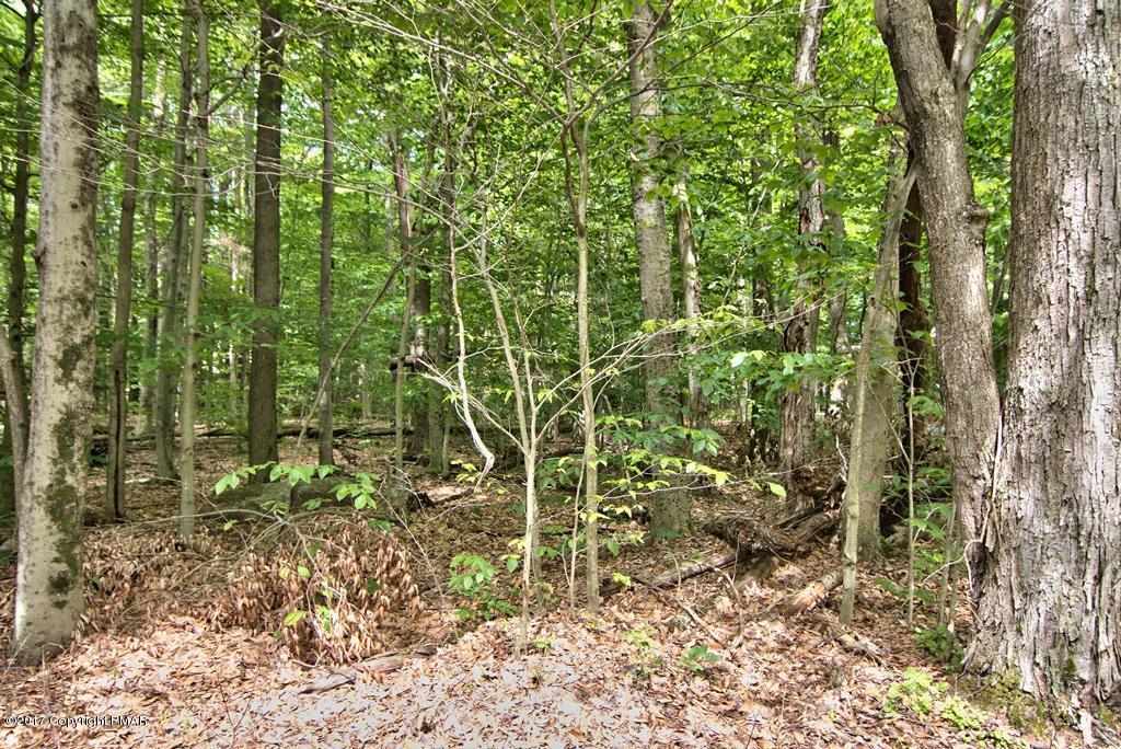Deer Run, Pocono Pines, PA 18350