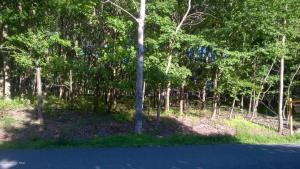218 Shenandoah Trl-lot 157, Effort, PA 18330