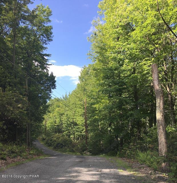 Lot-A44 Rhododendron Rd, Jim Thorpe, PA 18229
