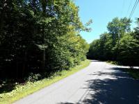 41 Buckskin Way, Pocono Pines, PA 18350