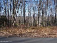 Lot H12 Wolf Hollow Rd, Lake Harmony, PA 18624