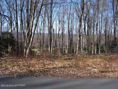 Photo of Lot H12 Wolf Hollow Rd, Lake Harmony, PA 18624