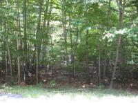 1806 White Pine (hemlock) Drive, Pocono Lake, PA 18347