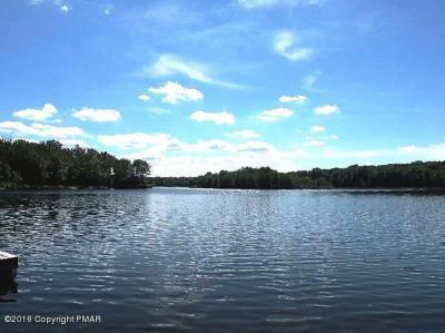 Photo of 273 Partridge Drive, Pocono Lake, PA 18347