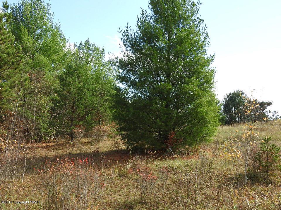 5 Redwood Rd, Blakeslee, PA 18610