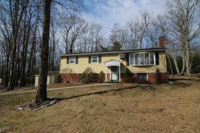 111 Pin Oak Ln, Tannersville, PA 18372