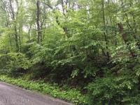 W Mountaintop Rd, Summit Hill, PA 18250