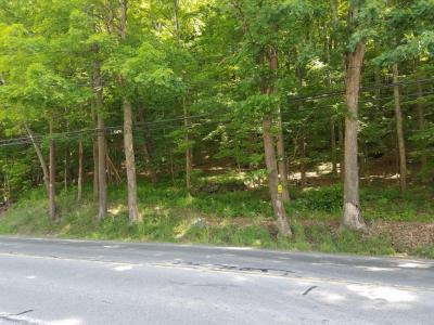 Photo of 191 E Of Rte 191, East Stroudsburg, PA 18301
