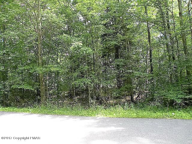520 Windy Pine Road, Pocono Lake, PA 18347
