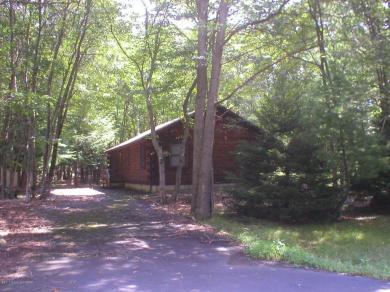 4 Wintergreen Court, Albrightsville, PA 18210