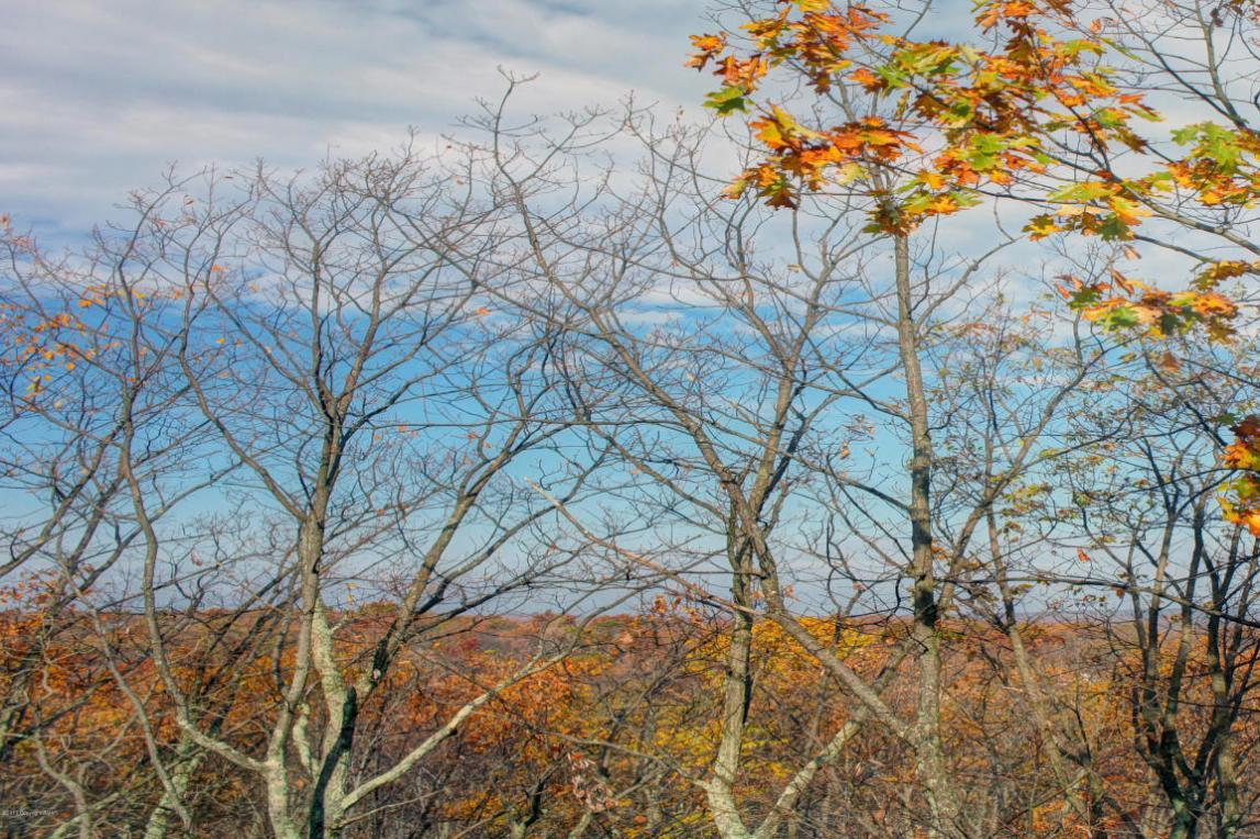 301 Overlook Way, Tannersville, PA 18372