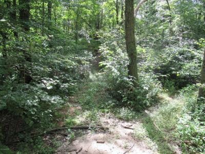 Photo of Stoney Lonesome Rd, Summit Hill, PA 12864