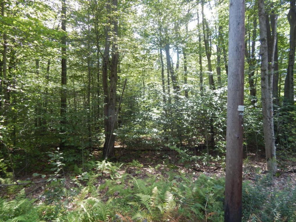 116 Blue Spruce Cresent, Pocono Pines, PA 18350