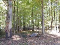 5 Mccauley Ave, Pocono Pines, PA 18350
