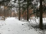 4173 Hemlock Trl, Pocono Pines, PA 18350 photo 5