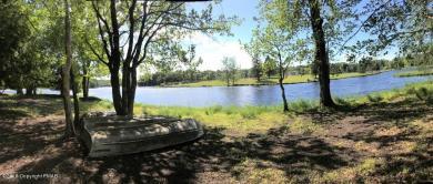 1145 Kinta Circle, Pocono Lake, PA 18347