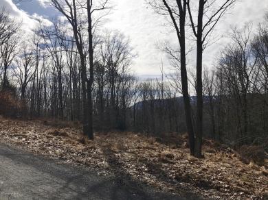 2140 Deerfield Way, Scotrun, PA 18355