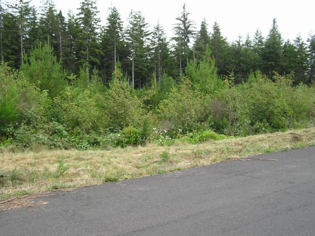 Green Gate Rd, Florence, OR 97439