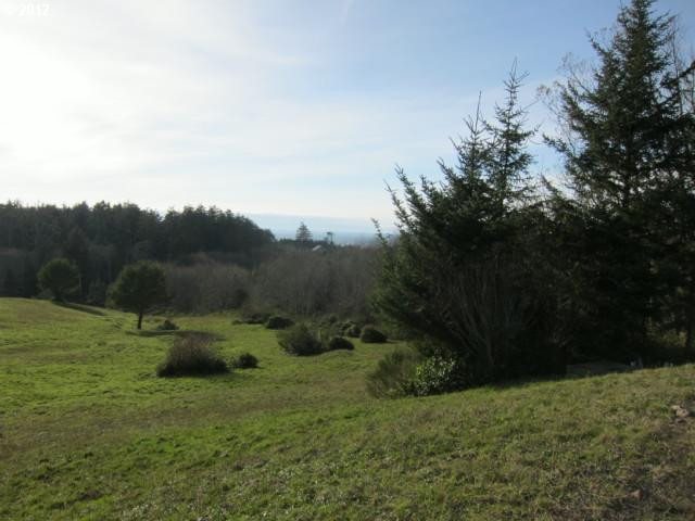 57 Meadowview Ln, Pacific City, OR 97135