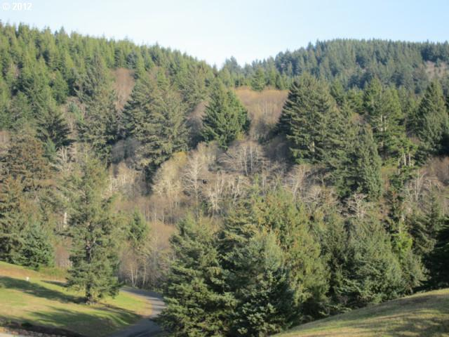 37 Southview Loop, Pacific City, OR 97135