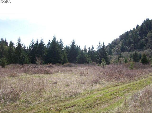 Shively Creek Rd, Canyonville, OR 97417