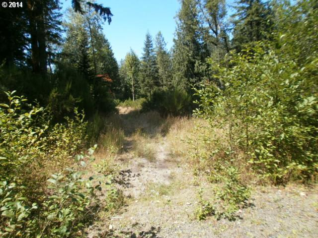 22479 E Brightwater Way, Rhododendron, OR 97049