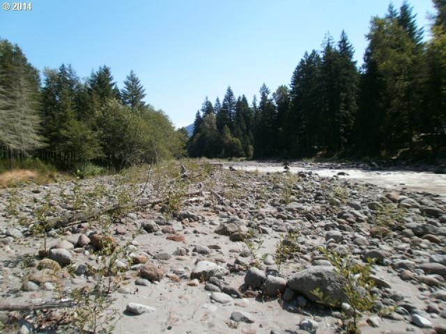 22550 E Brightwater Way, Rhododendron, OR 97049