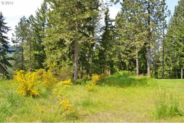 West View Dr, Lebanon, OR 97355