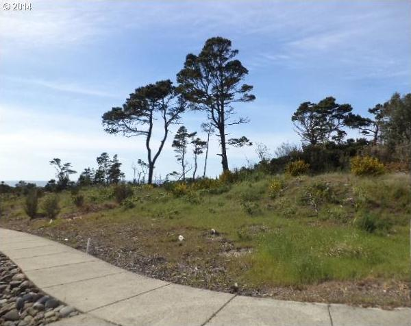 Twin Tree Ct, Florence, OR 97439