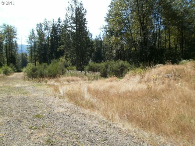 22463 E Brightwater Way, Rhododendron, OR 97049