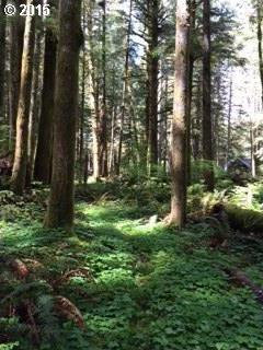 Twin Bridges Rd, Brightwood, OR 97011