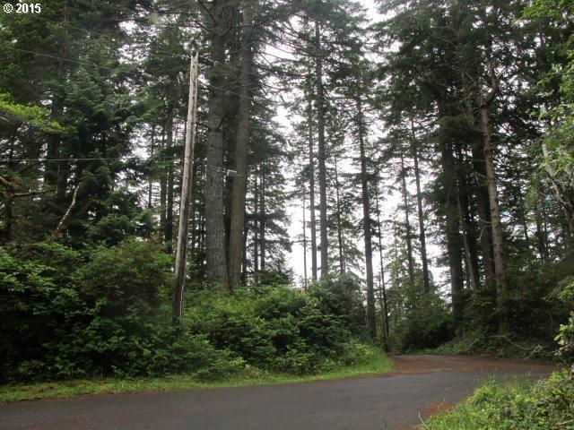 Collins Loop, Florence, OR 97439