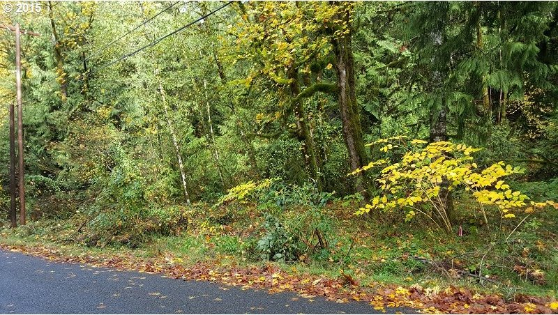 E Welches Rd, Welches, OR 97067