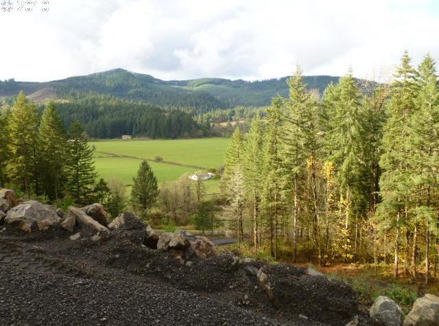 Upper Camp Creek Rd, Springfield, OR 97477