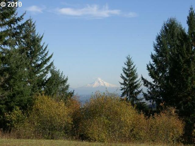 Briarwood, Scappoose, OR 97056