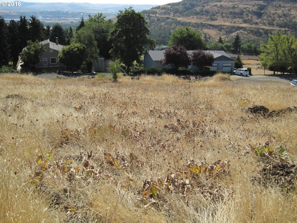 Sunflower, The Dalles, OR 97058