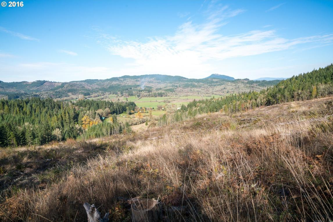 Camas Swale Rd, Creswell, OR 97426