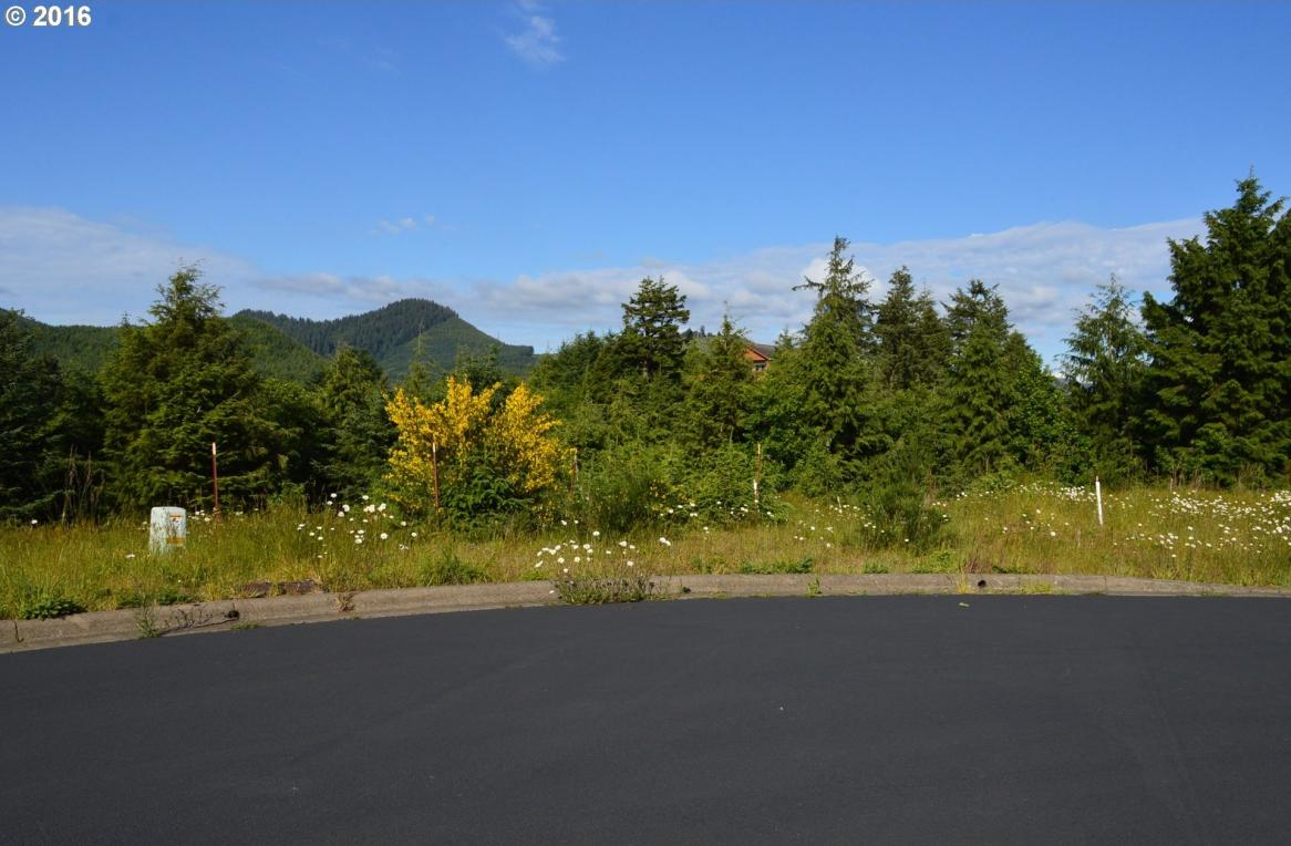Lahaina Loop Rd, Pacific City, OR 97135