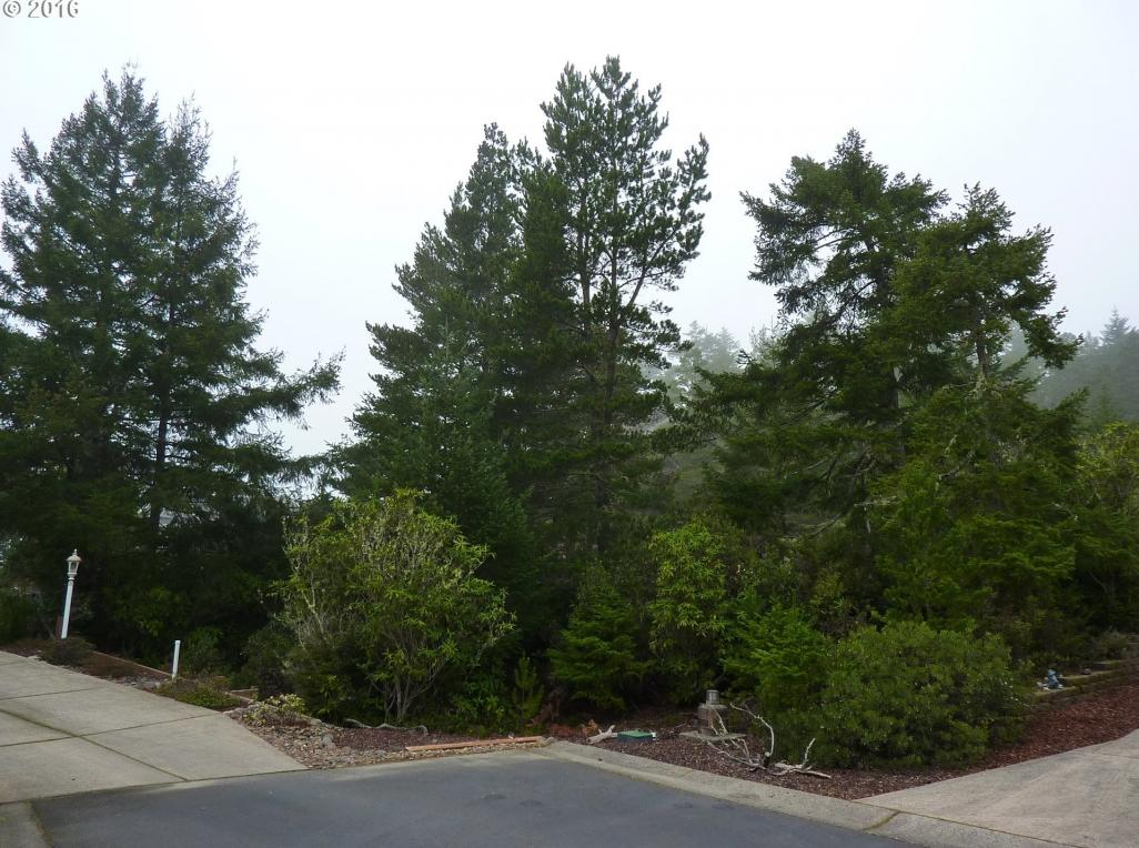 883 33rd Pl, Florence, OR 97439