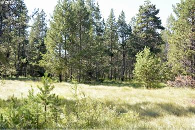 54691 Silver Fox Dr, Bend, OR 97707