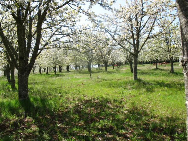 16595 SE Woodland Heights Rd, Amity, OR 97101