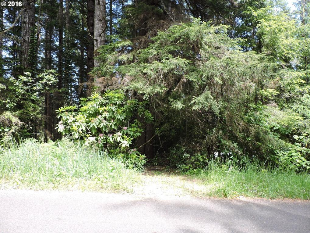 North Ln, Florence, OR 97439