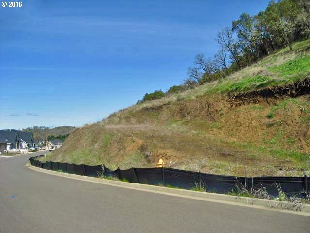 675 North View Dr, Winchester, OR 97495