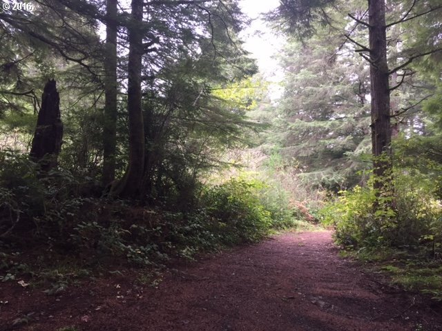Armstrong Way, Florence, OR 97439