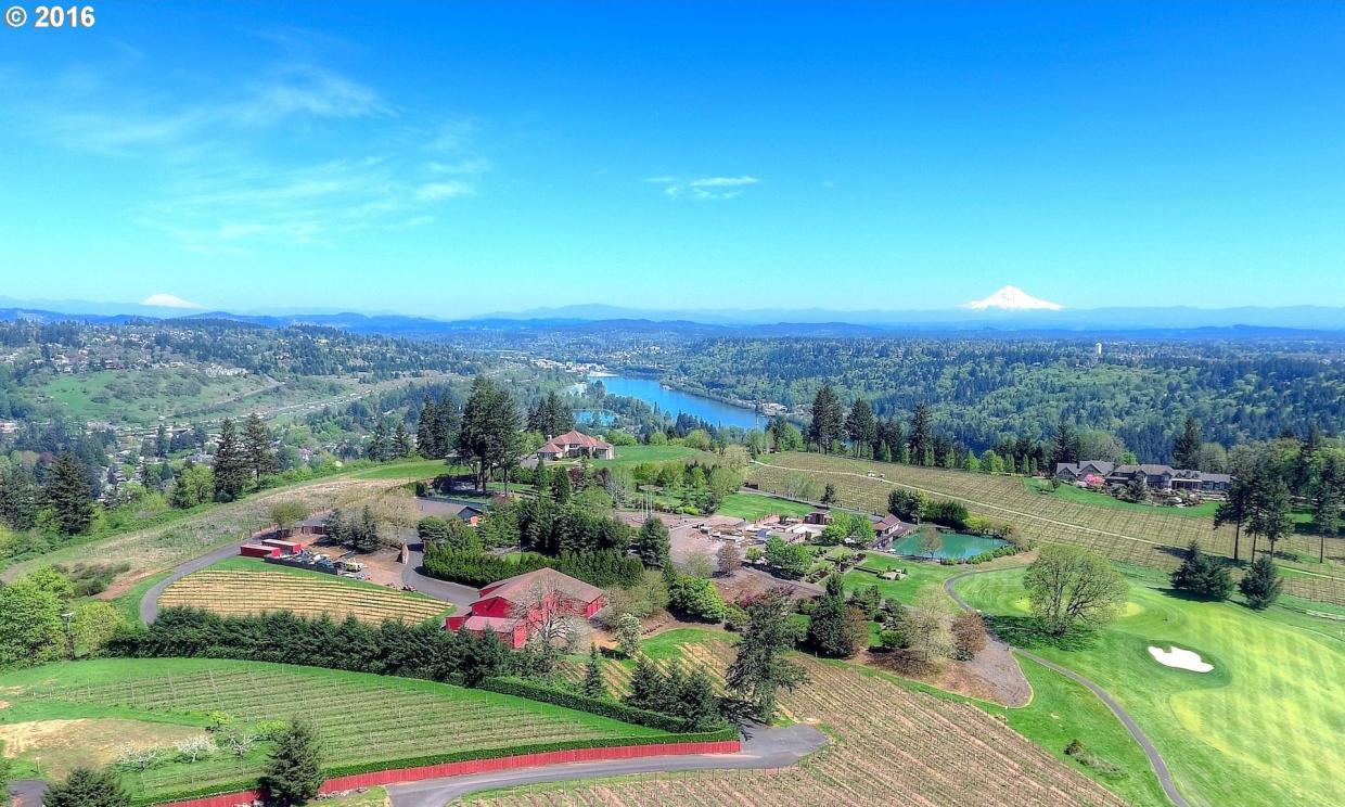 25144 SW Petes Mountain Rd, West Linn, OR 97068